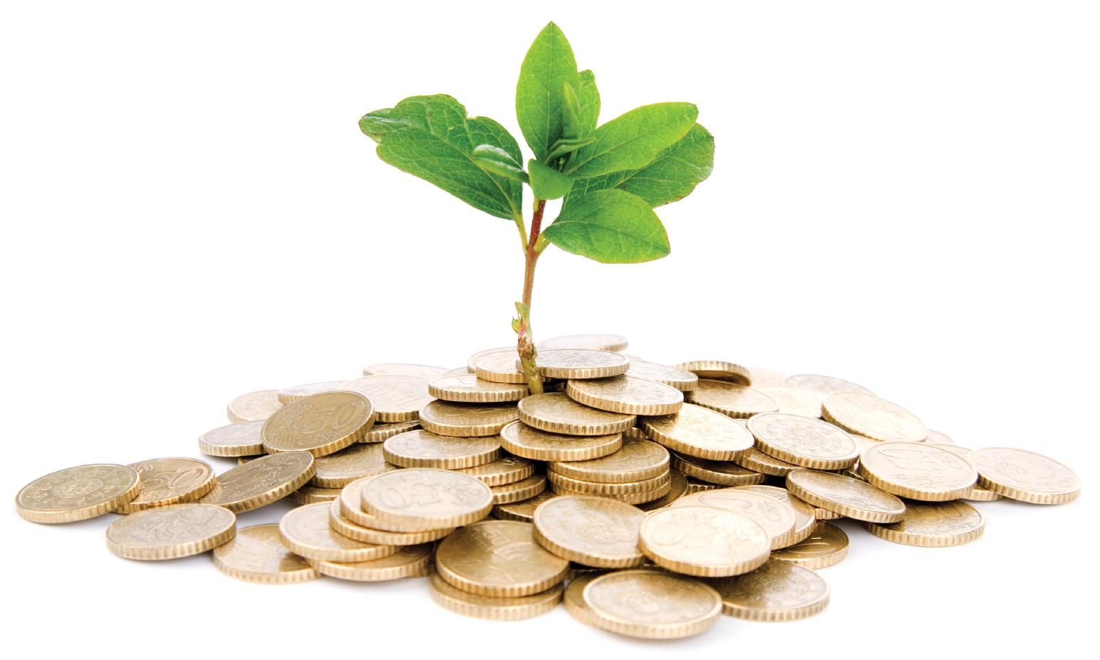 Fundraising sociale