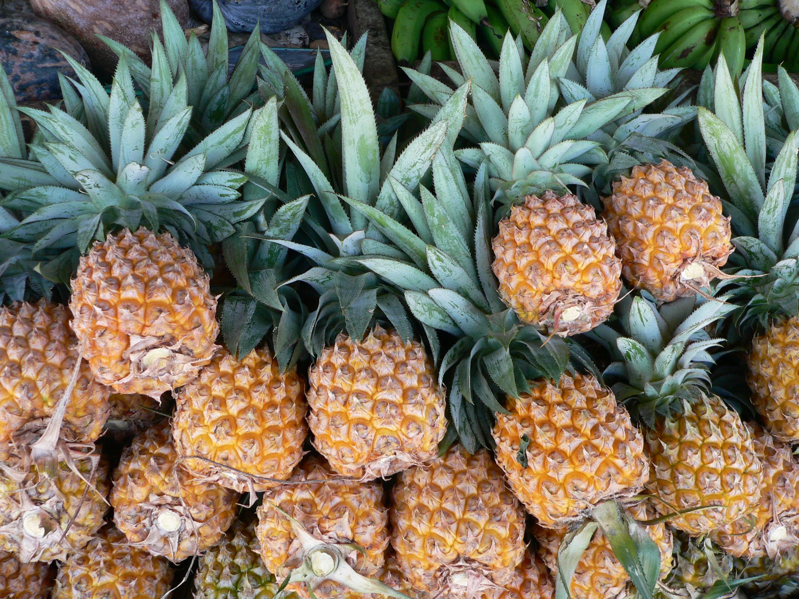 scarpe puma fatte con ananas Felicità Pubblica