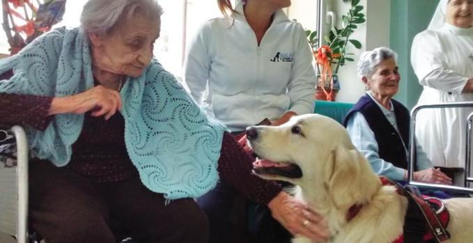 pet therapy in cinque case di riposo