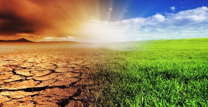 studio Global non-linear effect of temperature on economic production