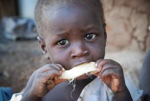 zambia bambino fame