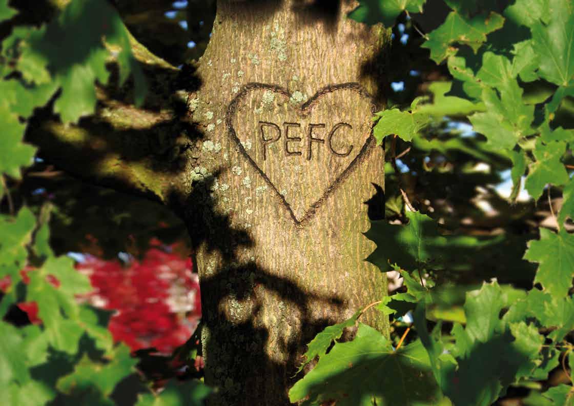 giornali stampati in carta certificata Pefc