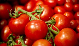 vernice ecologica dagli scarti delle bucce dei pomodori