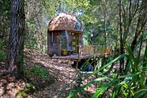 Usa casa eco-friendly su Airbnb