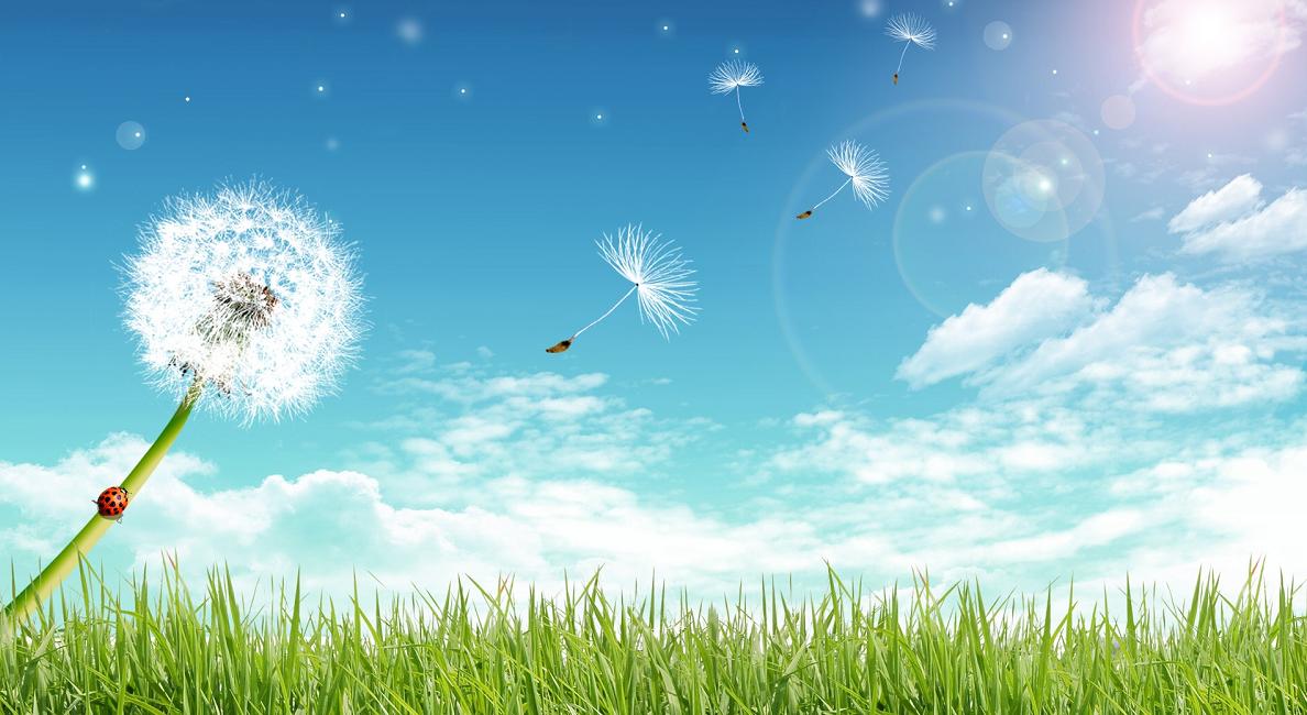 Risultati immagini per Immagini gratis per rappresentare il vento