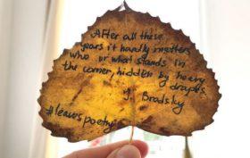 leaves poetry