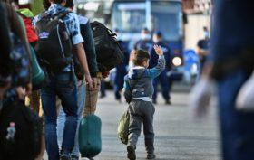 Le indicazioni dell'Alto Commissariato delle Nazioni Unite per i Rifugiati (UNHCR)