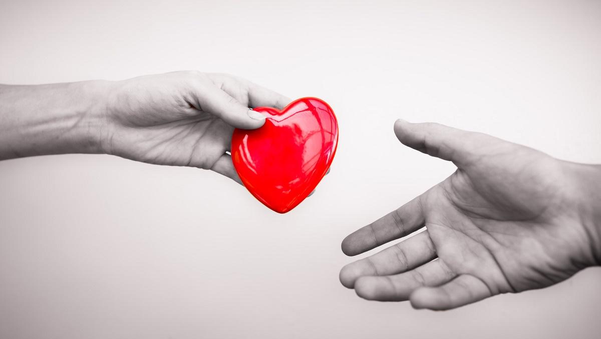 Nel nostro Paese crescono i trapianti e le donazioni d'organo