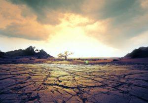 Ecosistemi, salute umana ed economia sempre più minacciati dai cambiamenti climatici
