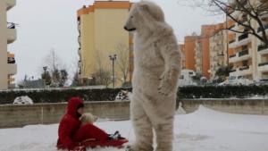 orso-polare-a-bari