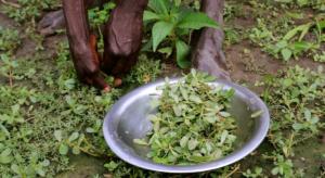 In Sud Sudan si muore di fame