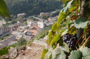 Le colture e i prodotti agricoli che vincono l'abbandono delle aree interne @ Sala Teatro Valdese   Pomaretto   Piemonte   Italia