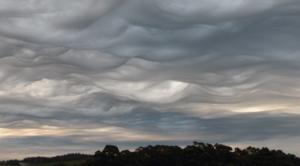 WMO - Atlante delle nuvole