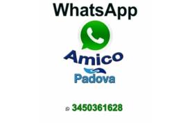 whatsapp amico - nuovissimo servizio telefono amico padova