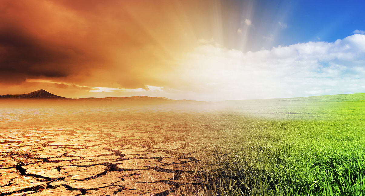 Risultati immagini per Cambiamenti climatici e carenza di cibo