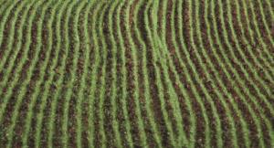 G7 agricoltura