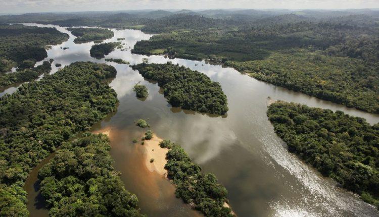 amazzonia rondonia