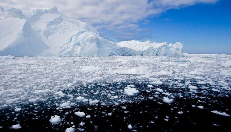 poli ghiacciai